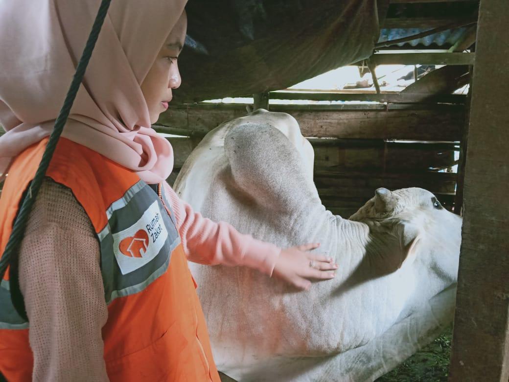 Jelang Hari Raya Qurban, Rumah Zakat Adakan Penyuluhan dan Pendampingan Kelompok Ternak